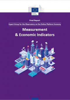 Measurement & Economic Indicators: Final report