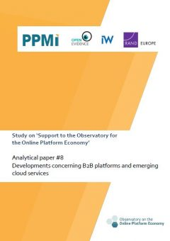 Analytical paper 8: Developments concerning B2B platforms and emerging cloud services