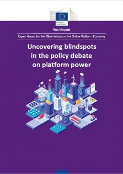 Uncovering blindspots in the policy debate on platform power: Final report